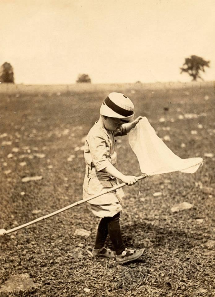 niño juega con un cazamariposas
