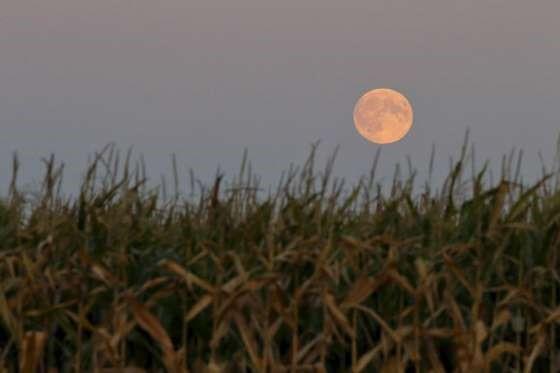 лучшие изображения затмения красной луны
