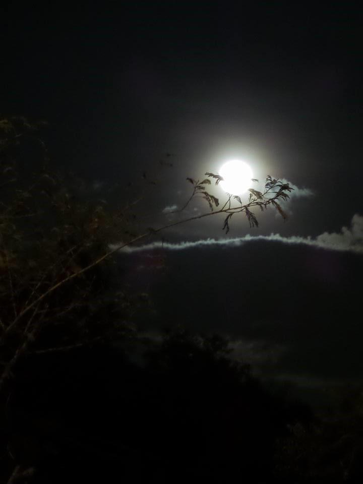 melhores imagens do eclipse da lua vermelha